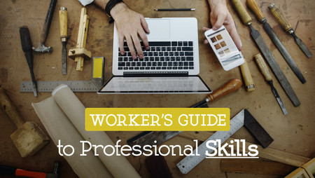 worker's guide to professional skills